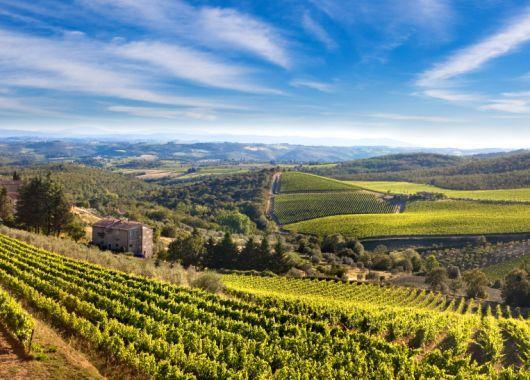 Toskana: 4 bis 8 Tage im Apartement für bis zu 6 Personen inkl. Halbpension und Weinprobe für 139€