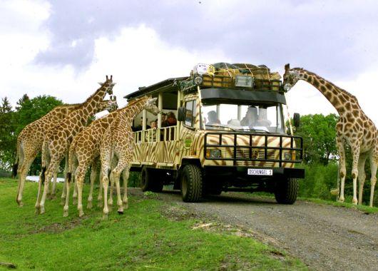 Serengeti Park Gutschein: 50% Rabatt auf den Eintritt für bis zu 7 Personen am 3. oder 4. August