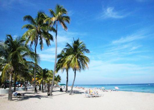 Wild am Mittwoch bei KLM und Airfrance: Hin- und Rückflug nach Fort Lauderdale oder Orlando (Florida) ab 483€