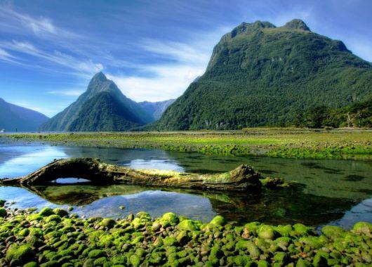 Hin- und Rückflug nach Auckland – Neuseeland ab günstigen 480€ pro Person mit Thai Airways (Star Alliance)
