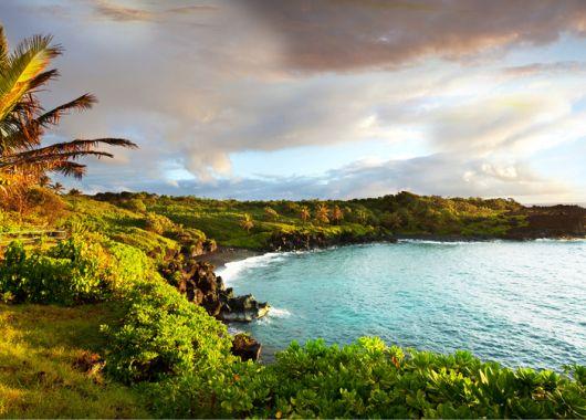 Whale Watching auf Hawaii: Mit Lufthansa für 674€ ins Paradies