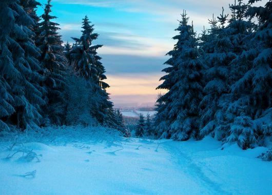 Winter in Südtirol: 4 Tage in der Juniorsuite eines 4*Hotels mit Frühstück und Wellness ab 169€