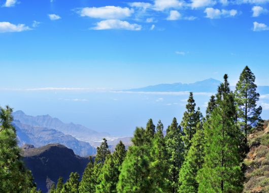 Lastminute: 7 Tage La Gomera im 3* Strandapartment inkl. Flug und Transfer für 404€
