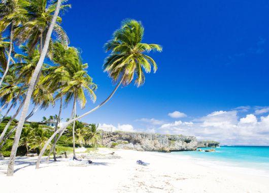 Eine Woche Wild: Karibik Special bei KLM und Airfrance, z.B. Curaçao oder St. Maarten ab 475€