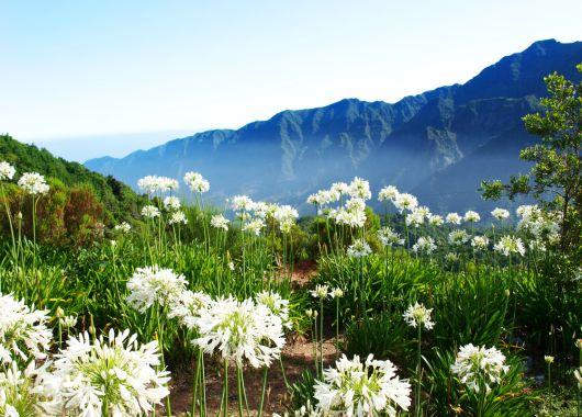 1 Woche Madeira im November: 4* Hotel, Flug und Transfer ab 497€