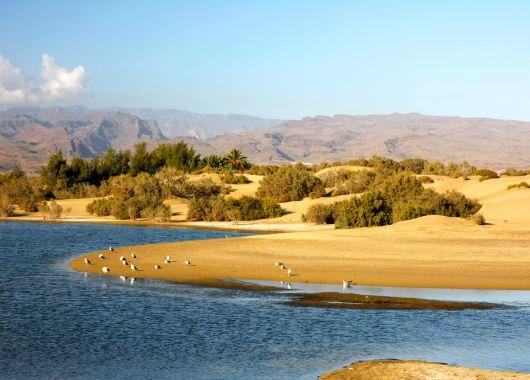 1 Woche Gran Canaria im Juli im 3*Bungalow mit Flügen und Transfers für 341€