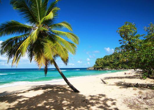 Last-Minute: Hin- und Rückflug in die Dominikanische Republik oder nach Cancun ab 310€