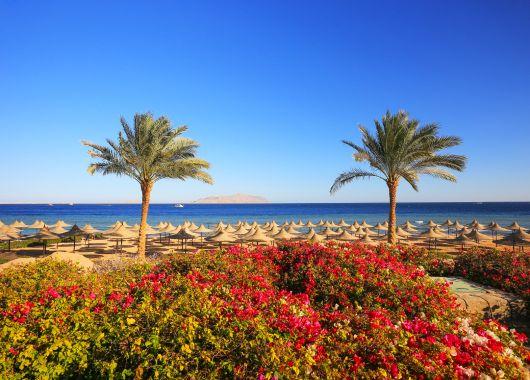 All Inclusive in Ägypten: 10 Tage im 4* Hotel inkl. Flug und Transfer ab 365€
