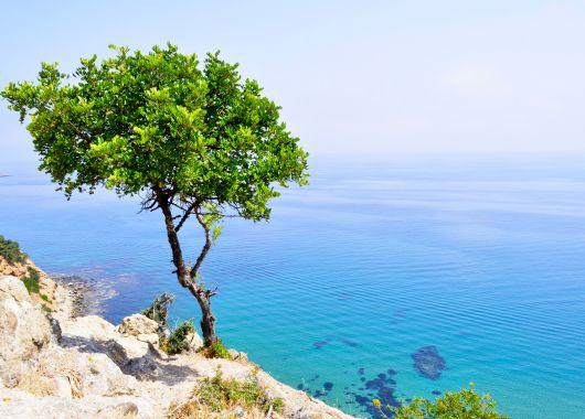 Luxus auf Zypern: 1 Woche im 5* Hotel inkl. Flug, Transfer, Rail & Fly und Frühstück ab 329€