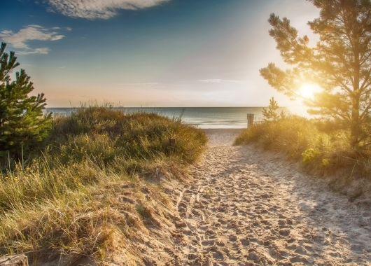 Dänemark – 5 Tage für bis zu 5 Personen in einer Dancamps Ferienhütte am Meer für 279€