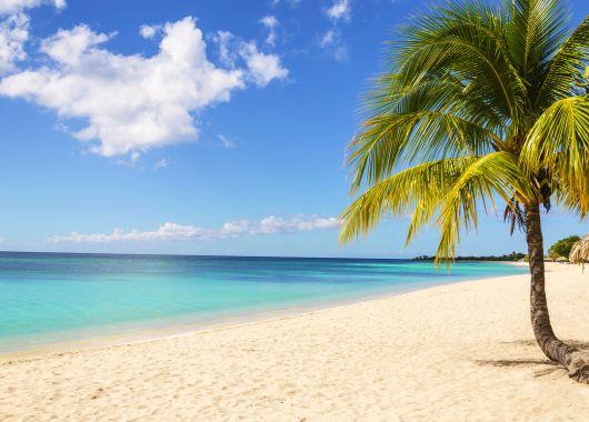 Lastminute: 9 Tage Kenia, Diani Beach im 5* Hotel inkl. Halbpension, Flug und Transfer ab 851€