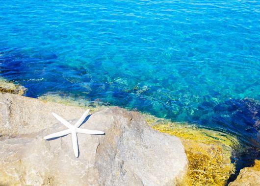 Zypern: 1 Woche im 4* Hotel inkl. Flug und Halbpension ab 264€