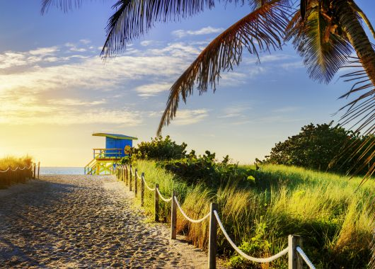 Florida individuell erkunden: 15 Tage Fly&Drive Miami ab Deutschland für 699€