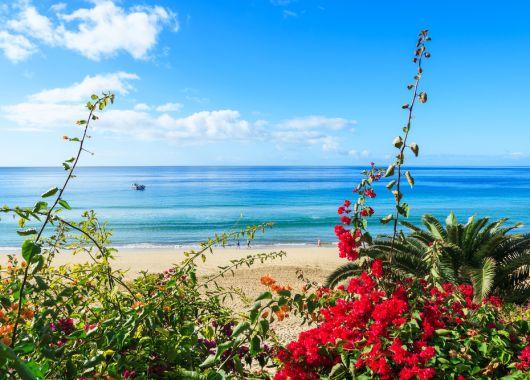 Fuerteventura: 1 Woche im guten Hotel inkl. Flug ab 281€ pro Person