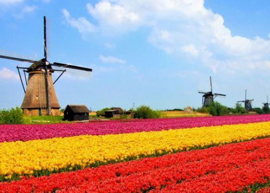 Flusskreuzfahrt durch Holland – 7  Tage in einer Außenkabine mit Vollpension und Gala Dinner für 275€