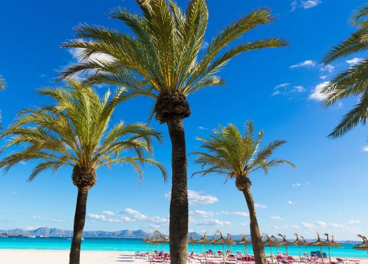 Kurztrip nach Mallorca: 4 Tage im 4* Hotel inkl. Frühstück, Flug und Transfer ab 190€