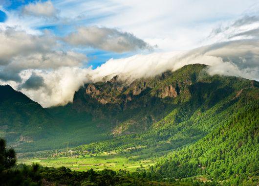 5 Tage La Palma Ende März: 3* Apartment, Flug und Transfer ab 363€