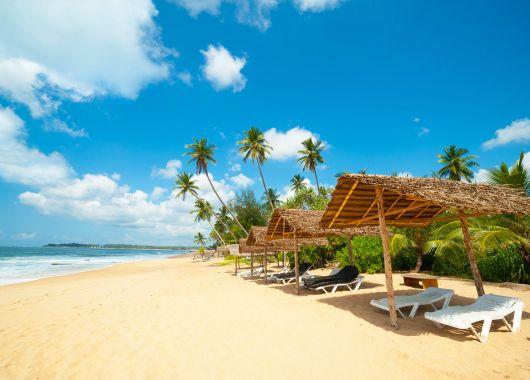 Mai – Juni: 9 Tage Sri Lanka im 4,5* Resort inkl. Halbpension, Flug und Transfer ab 800€