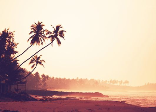 2 Wochen Sri Lanka im November: 4* Bungalow mit Meerblick, All Inclusive, Flug und Transfer ab 1152€