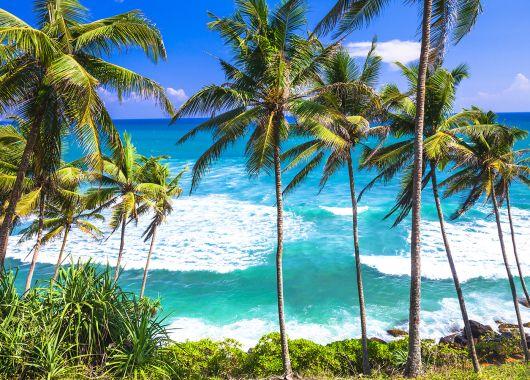 Sri Lanka: 9 Tage All Inclusive im grandiosen 4* Hotel inkl. Flug, Transfer und Rail & Fly ab 987€