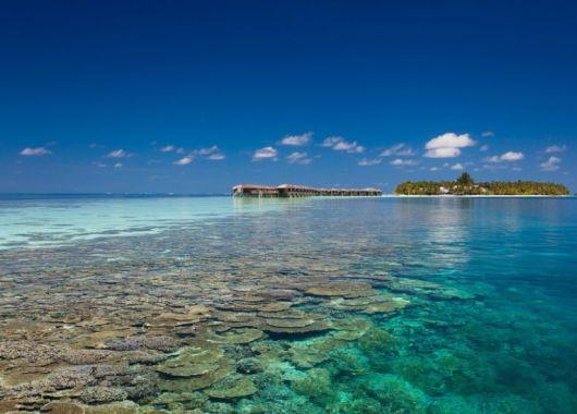 9 Tage Malediven im 4,5* Award-Hotel mit All In, Flug, Rail&Fly und Transfer ab 1539€