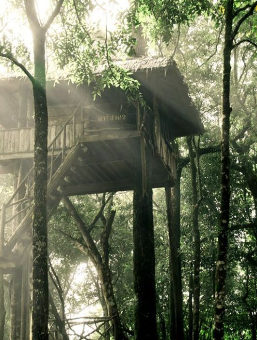 Baumhaus mieten – Die besten Tipps und Adressen für eure Übernachtung im Baumhaus