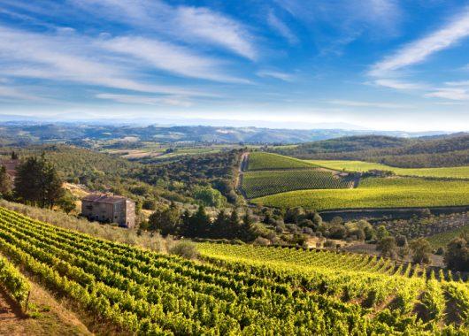 8-tägige Rundreise in Italien (Piemont & Toskana) mit Dinner und Frühstück ab 279€