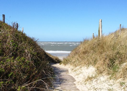 45% Rabatt für 3 Tage Ostseeurlaub im Seehotel Grossherzog ab Ende April 2013