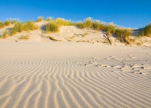 Usedom: Romantischer 3 oder 4-tägiger Urlaub im 4* Strandhotel Atlantic inkl. Wellness, Frühstück & Abendmenü für 89€ p.P.