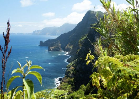 Winterwoche auf Madeira: 4* Hotel inkl. Frühstück, Flug, Rail&Fly u. Transfer ab 357€