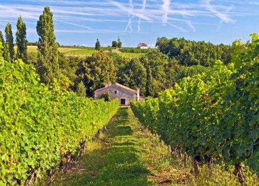 Individuelle Reise nach Bordeaux: z.B. 7 Tage ab 275 Euro