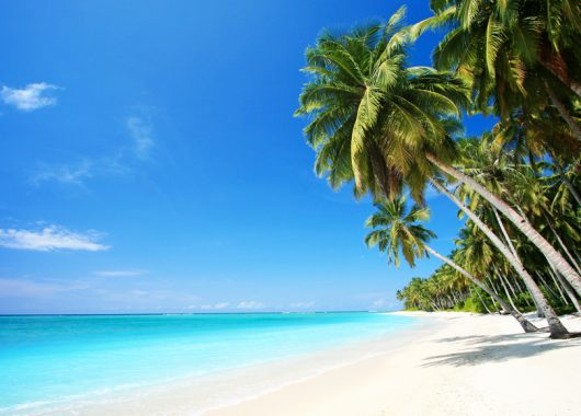 Wild am Mittwoch: Mit KLM und Airfrance ab 574€ nach San Juan, Puerto Rico