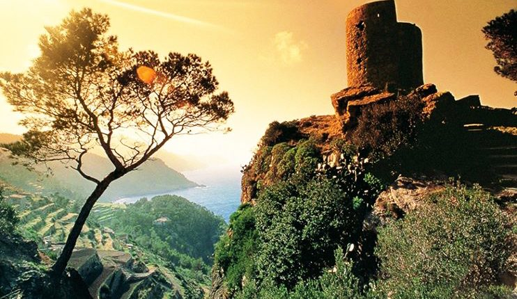 Super Last Minute: Flüge nach Mallorca ab 33€ pro Strecke