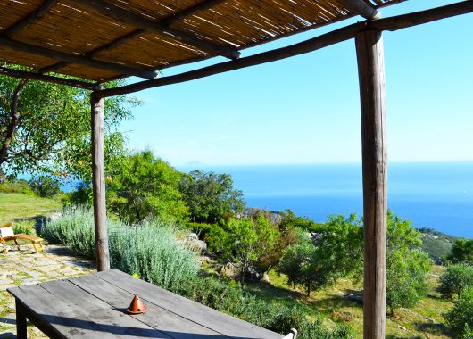 """Reisebericht Elba: 5 Tage auf der """"blühenden Insel""""  – Getting away from it all"""
