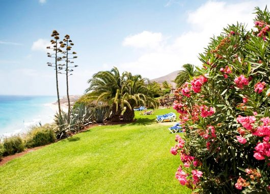 Luxus-Schnäppchen: Eine Woche Fuerteventura im Robinson Club ALL INCLUSIVE inkl. Transfer, Flügen und Zug zum Flug nur 772€