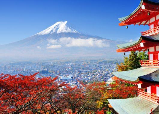 Wild am Mittwoch: Hin- und Rückflug nach Tokio ab 499€