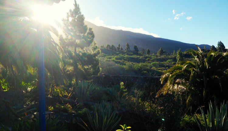 Last Minute: 1 Woche La Palma im November oder Dezember inkl. Flug, Transfer und 3* Hotel ab 193 Euro p.P.