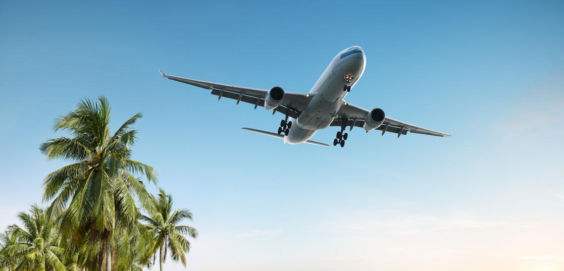 reisen allgemein flug travel palmen