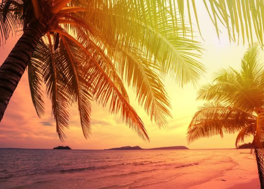 Sri Lanka: 14 Tage im 3* Hotel inkl. Flug, Transfers und Frühstück ab 735€ pro Person