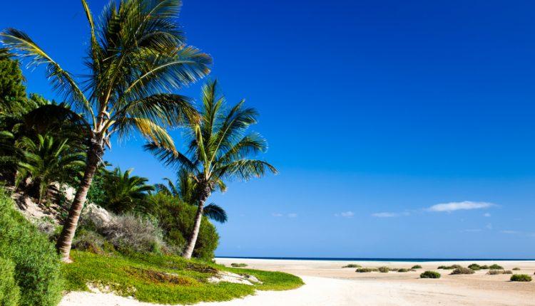 Lastminute: 10 Tage Fuerteventura inkl. 3* Hotel, Flug und Transfer für 247€ (ab Nürnberg, Stuttgart, Düsseldorf, Hannover)