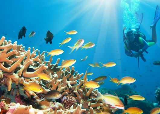 Ägypten: 1 Woche All Inclusive im 4* Resort inkl. Flug und Transfer ab 270€