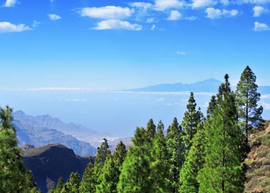 1 Woche Gran Canaria in einer 4* Suite inkl. HP, Flug, Rail&Fly und Transfer ab 420€
