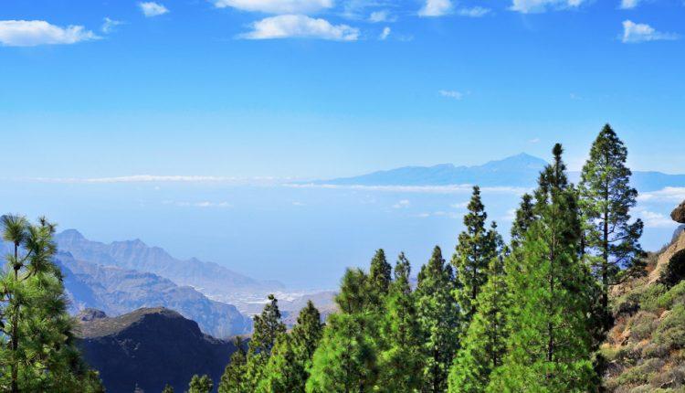 Eine Woche Gran Canaria im Apartment inkl. Flug und Transfer ab 333€