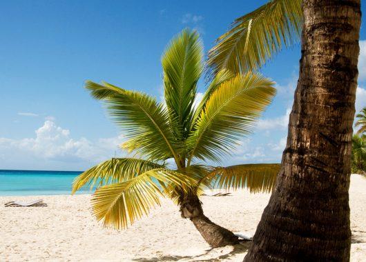 2 Wochen Dominikanische Republik im 4* Hotel mit All In, Flug, Rail&Fly und Transfer ab 914€