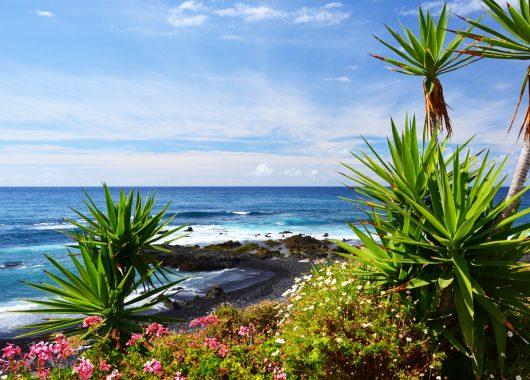 Teneriffa: 7 Tage im 3*Hotel inkl. Flug, Transfer und Halbpension ab 357€