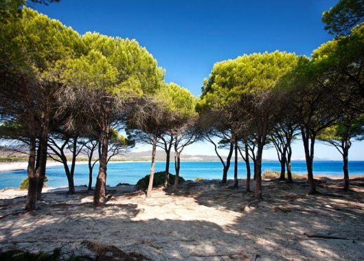 1 Woche Sardinien im hübschen 3* Hotel inkl. Frühstück und Flug ab 363€