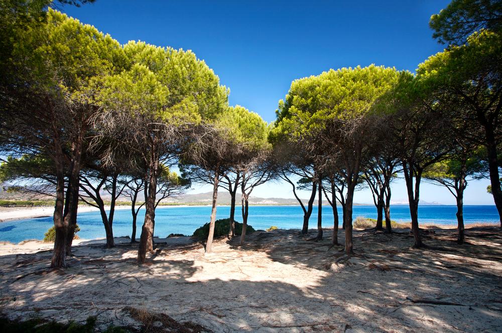 Budoni Strand Sardinien Italien