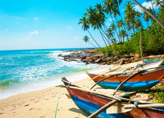 9 Tage Sri Lanka im 4*Hotel inkl. Flug, Frühstück, Rail&Fly und Transfers ab 634€