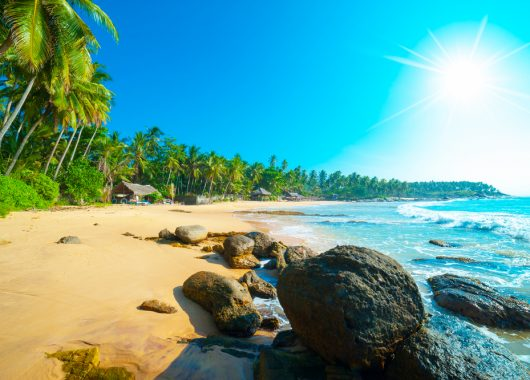 Sri Lanka im Juni: 13 Tage im 2,5* Hotel inkl. Flug, Transfer, Rail & Fly und Halbpension ab 761€ pro Person
