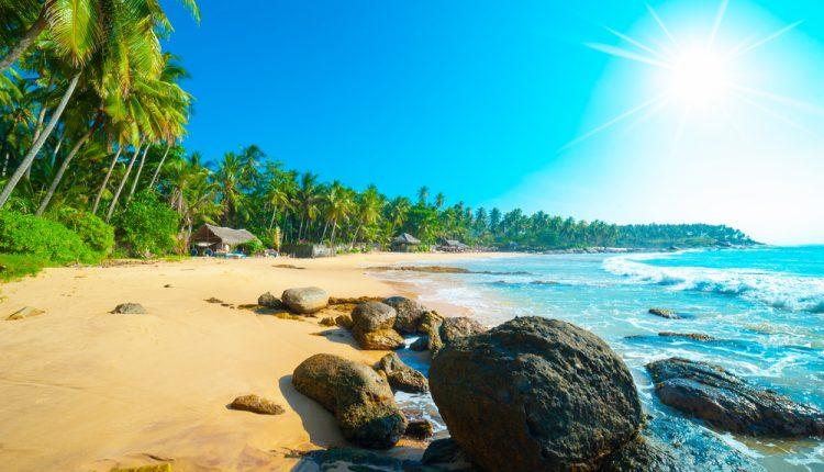 10 Tage Sri Lanka inkl. 3* Hotel mit Meerblick, Flug und Transfer ab 692€